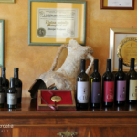 The Wonderful Wineries Of Istria