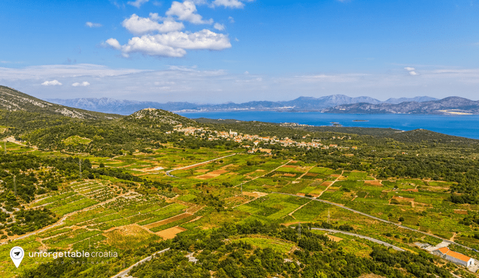 Croatian wine, Peljesac peninsula