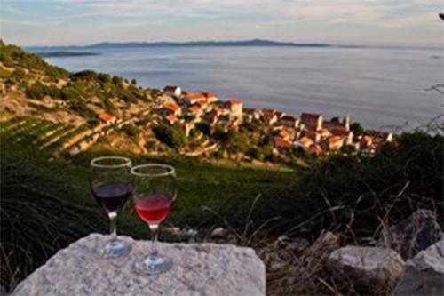 Sipan, wine tasting, Croatia