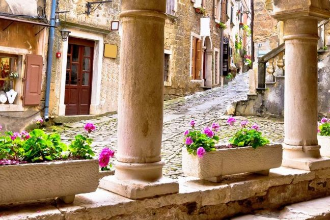Istria Gourmet Food Tour