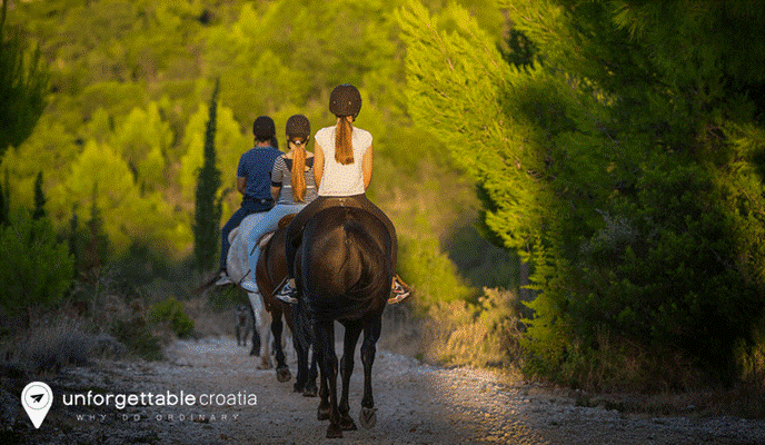 Croatia horse riding