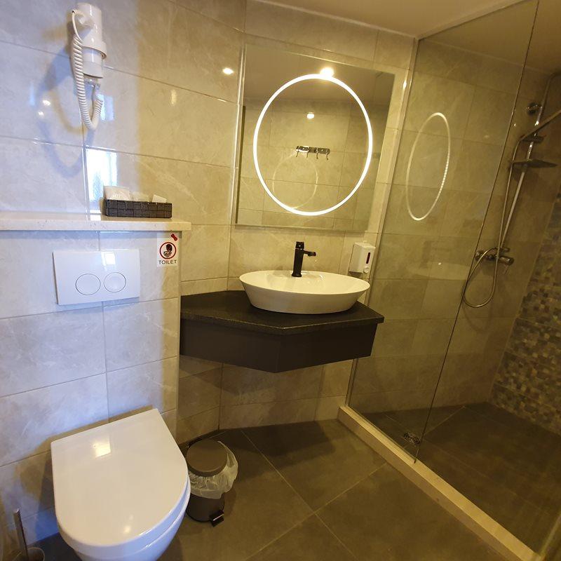 MV Antaris bathroom
