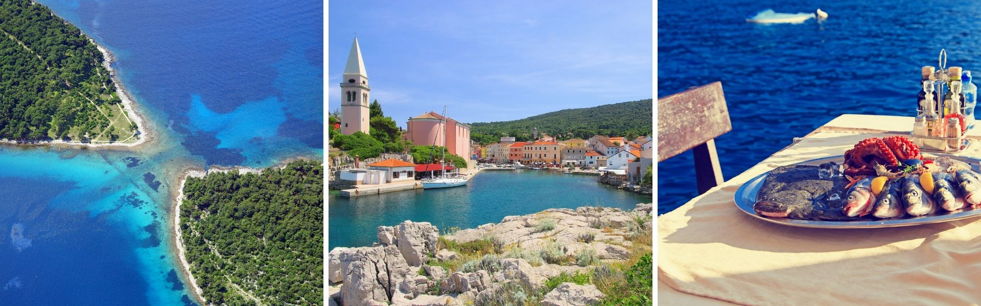 Win a dolphin watching trip to Losinj